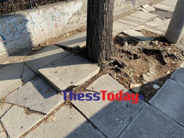 Νέα Εγνατία: Πεζοδρόμια και πινακίδες σε τραγική κατάσταση (ΦΩΤΟ), φωτογραφία-11