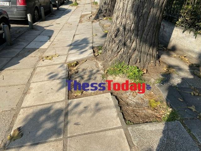 Νέα Εγνατία: Πεζοδρόμια και πινακίδες σε τραγική κατάσταση (ΦΩΤΟ), φωτογραφία-8